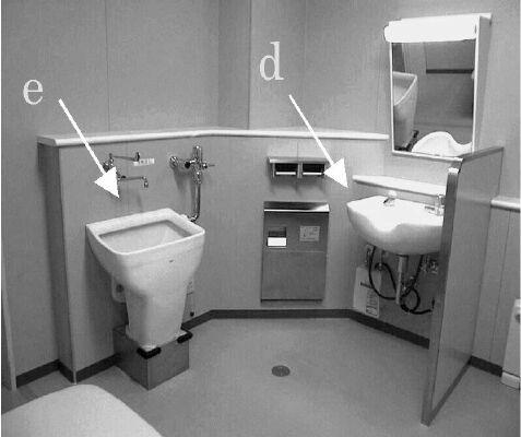Ostomy Toilets